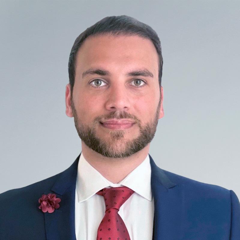 Peter N. Hakim